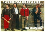 SKREWDRIVER - THE BEGINNING Bandposter Din-A-3 -